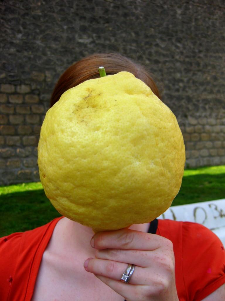 Lemonhead Bethany