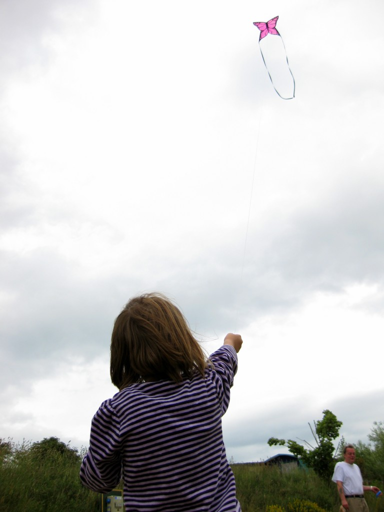 The kite flyer 2
