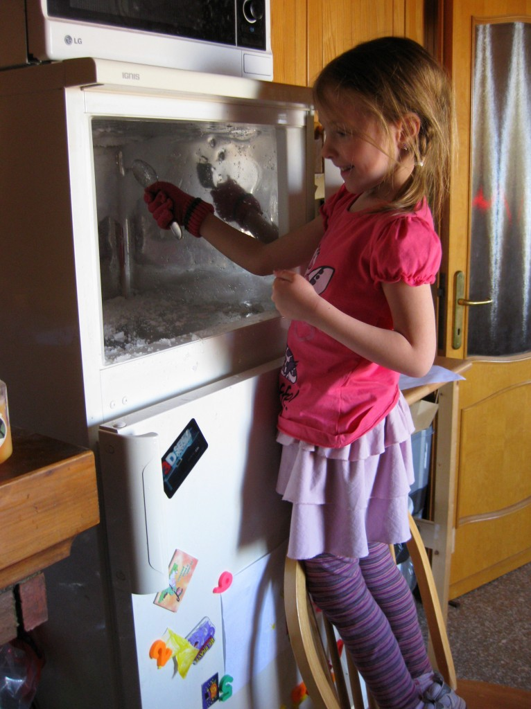 Best freezer defroster ever