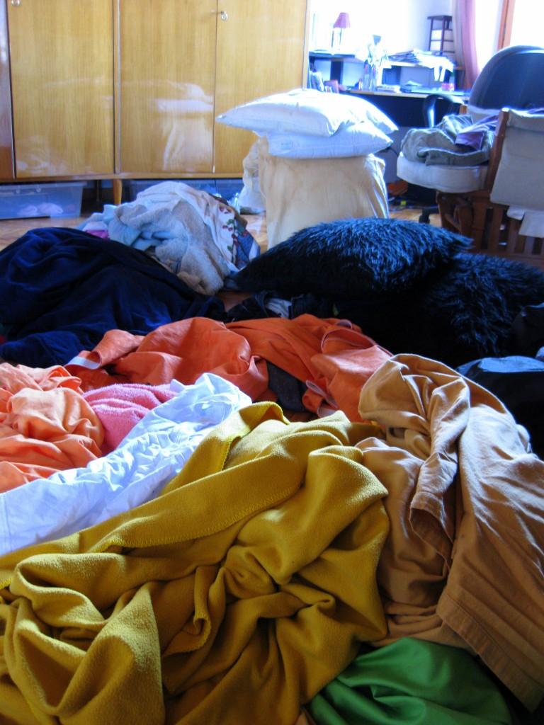 Lice laundry