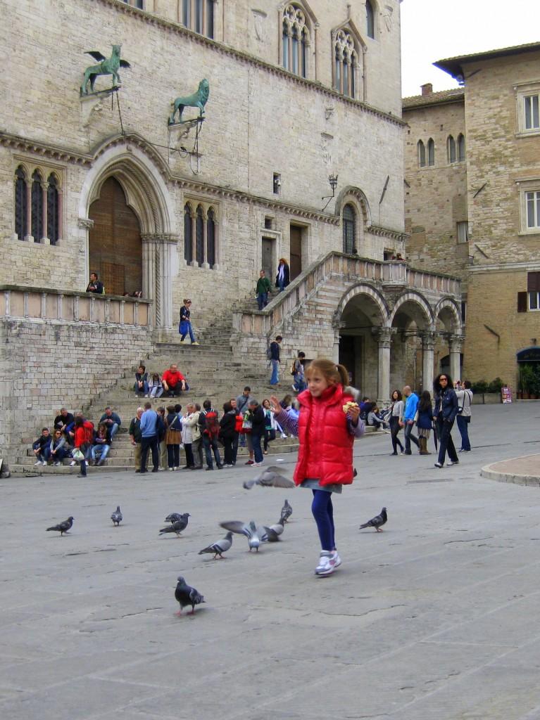 Perugia - Pigeons in Centro