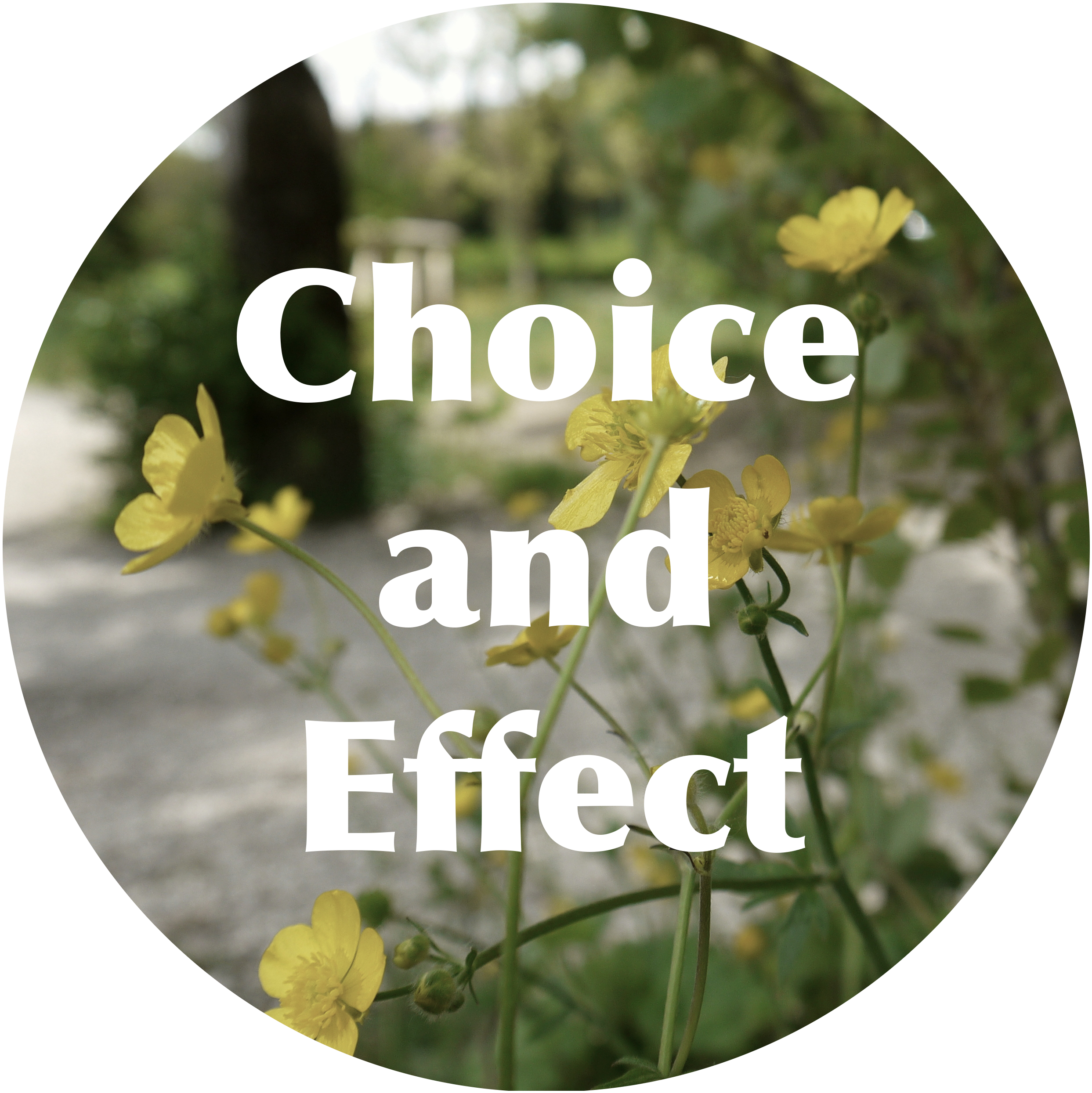 Choice and Effect