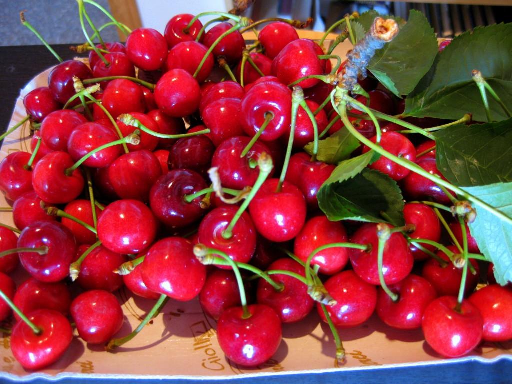 Cherries from the backyard