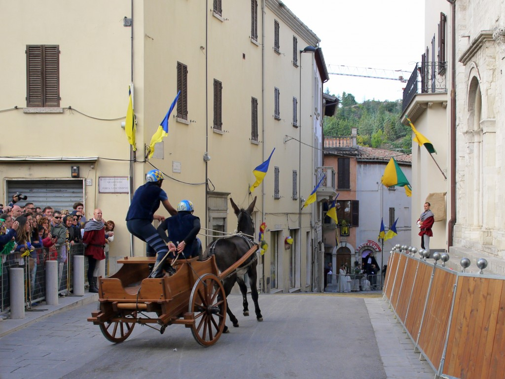 San Benedetto's donkey cart 2